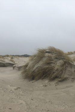 Winterliches Ostfriesland Langeoog